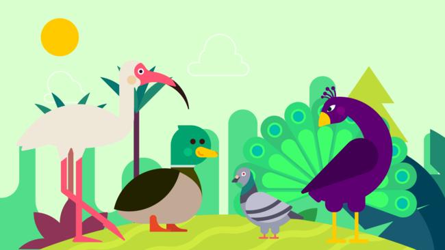 الطيور  |  تعلم الأسماء